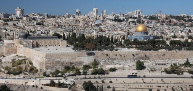 Dem delegate: Israel must be 'terminated'