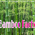 बम्बू यानि बांस से जुड़े 25 रोचक तथ्य और जानकारी Bamboo In Hindi Baans Ki Jankari