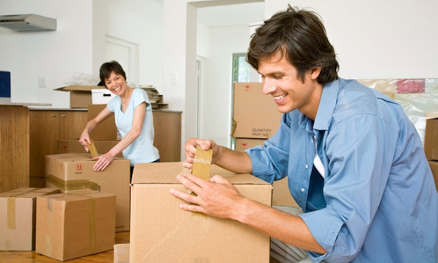 Why You Should Hire Professional Packers and Movers