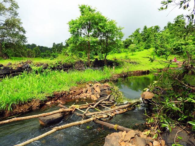 Catching fish. River. Valwanda. Maharashtra. India