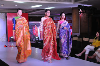 South Indian Celebrities Pos at Love For Handloom Collection Fashion Show  0150.jpg
