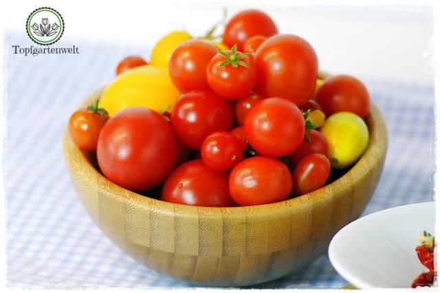 Antipasti haltbar machen - Foodblog Topfgartenwelt