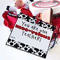 Moo-velous Teacher