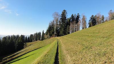 Nülli-Stierenberg