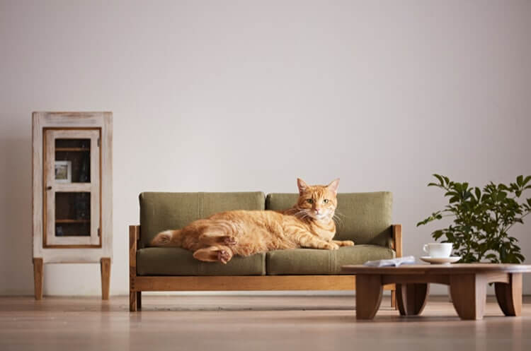 This Fascinating Collection Of Miniature Furniture For Cats Will Satisfy Every Cat Lover