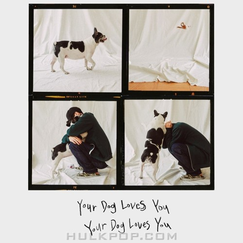 Colde – Your Dog Loves You (Feat. Crush) – Single (FLAC)