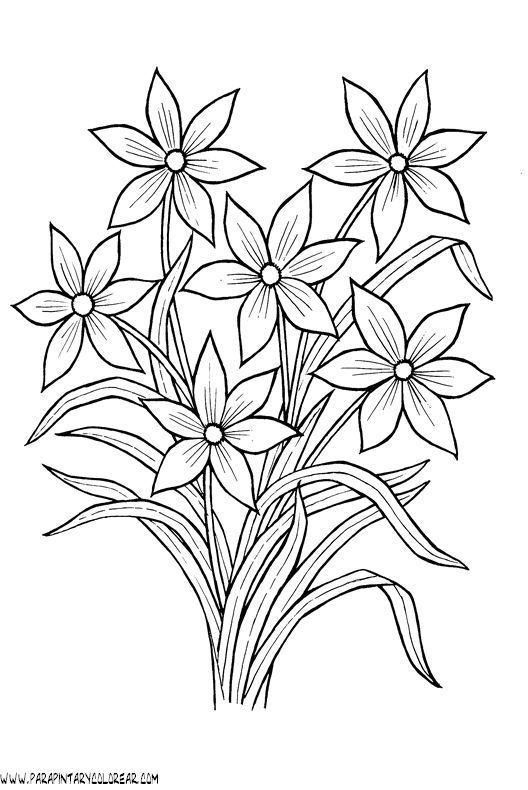 Tranh tô màu bông hoa 9