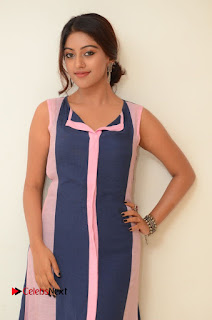 Actress Anu Emmanuel Pictures in Long Dress at Majnu Audio Success Meet 0015