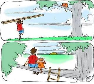 Título: Curtindo o pôr-do-Sol!!! Ilustração composta por dois quadros, um superior e outro inferior. Quadro superior: Na lateral direita, o tronco de uma árvore com a parte inferior da copa. Sobre um galho, há um gatinho laranja com pintas redondas em marrom. Na lateral esquerda , um garoto carrega sobre a cabeça uma escada de madeira e caminha em direção a árvore. Ele usa camiseta vermelha e bermuda azul. No céu, alguns pássaros e nuvens. Quadro inferior: Ponta superior da escada encostada no galho. O garoto e o gatinho estão sentados abraçados admirando o pôr-do-sol no horizonte. No canto inferior direito a assinatura do autor: Boro13.