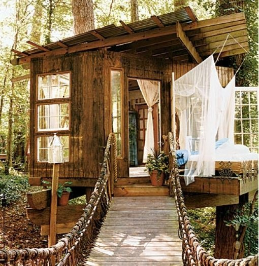 mostek linowy i dom na drzewie