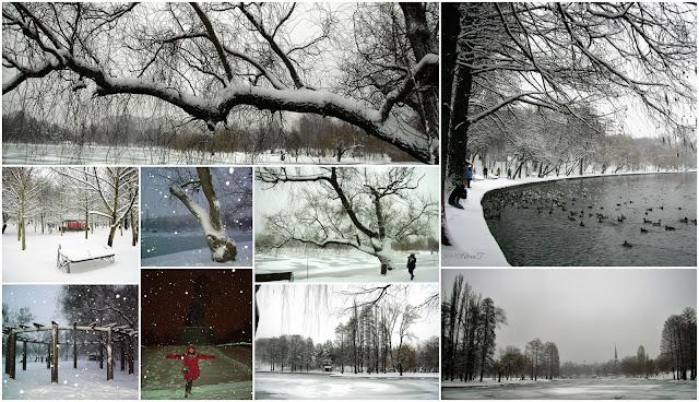 """""""Apă şi foc, gheaţă şi fum, - azvârl şi strig, azvârl şi strig: Priviţi-mă, trăiesc şi sunt acum, şi mă las nins şi nu mi-e frig."""" Nichita Stănescu"""