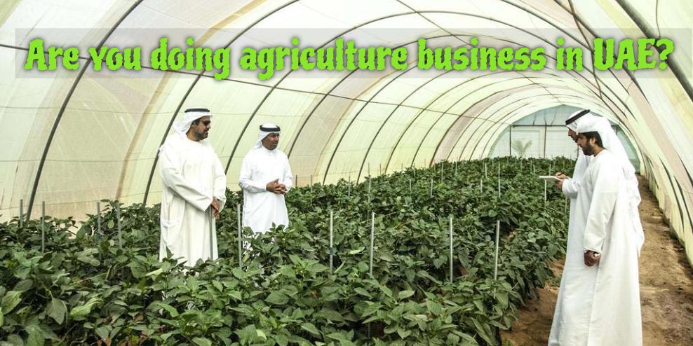 Manufacturers UAE, United Arab Emirates, UAE Manufacturing