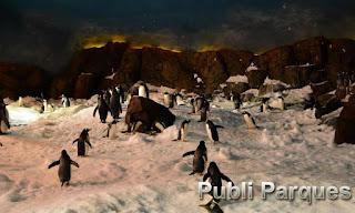 Pingüinos Faunia