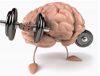 أهم نصائح العلوم الموصى بها لتقوية الذاكرة معلومات صحية