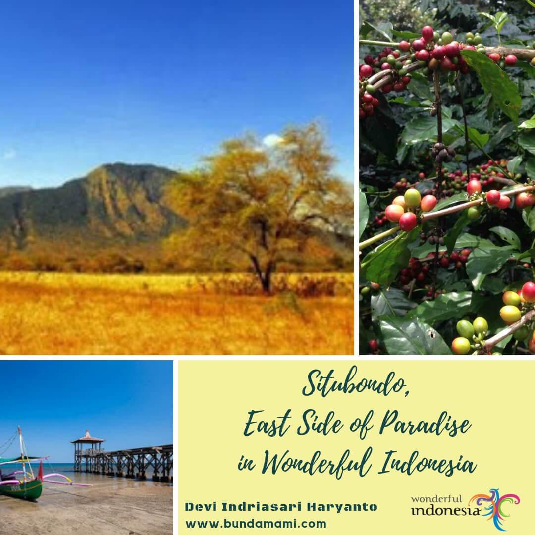 Situbondo East Side of Paradise in Wonderful Indonesia