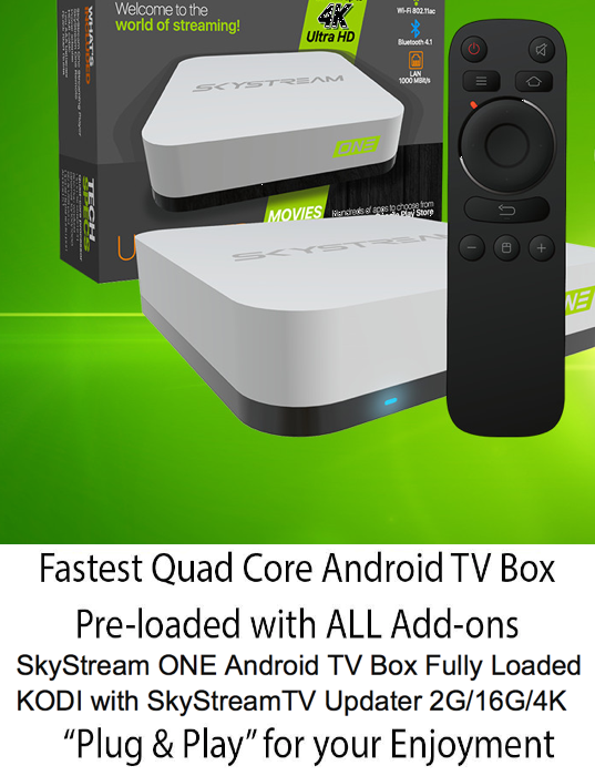SkyStreamX 4 Media Streamer