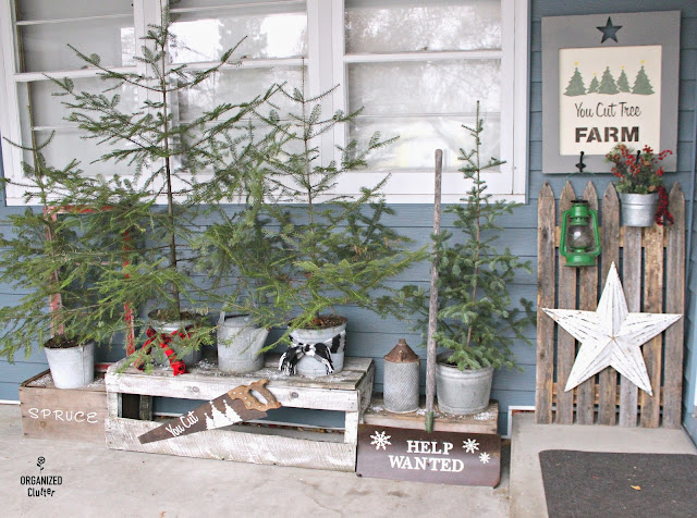 Rustic Christmas Patio Decor www.organizedclutter.net