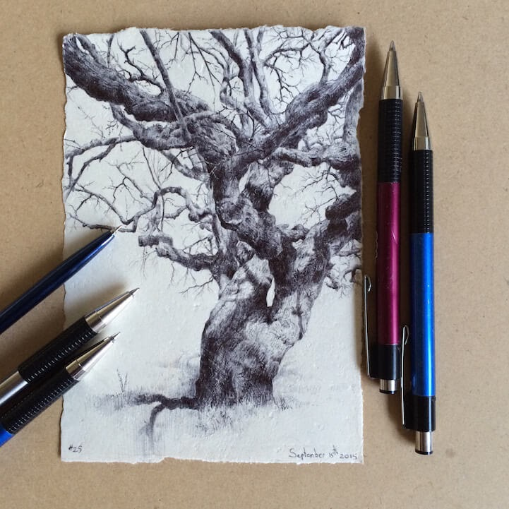 10-Dina-Brodsky-Tree-Drawings-www-designstack-co