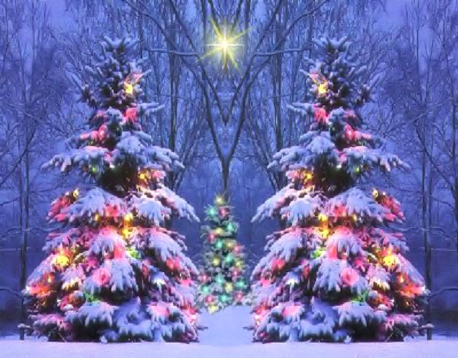 Christmas Scenes Images.Christmas Scenes Background Pictures Wallpaper Wallpapers