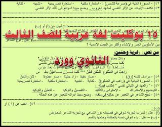 15 بوكليت لغة عربية للصف الثالث الثانوى 2018 word