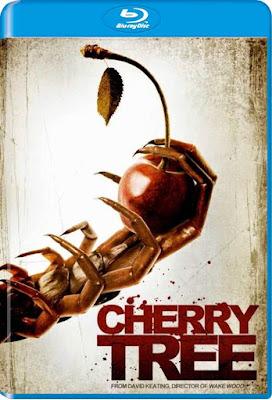 Cherry Tree 2015 BD25 Latino