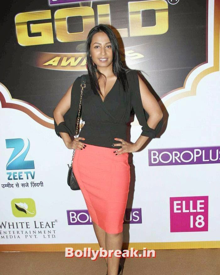 Kashmira Shah, Popular Tv Actresses on The Red Carpet of 7th Boroplus Gold Awards