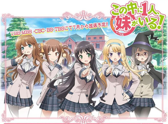 Kono Naka ni Hitori, Imouto ga Iru! ( Nakaimo ) BD + OVA Sub Indo : Episode 1-12 END + 1 OVA | Anime Loker