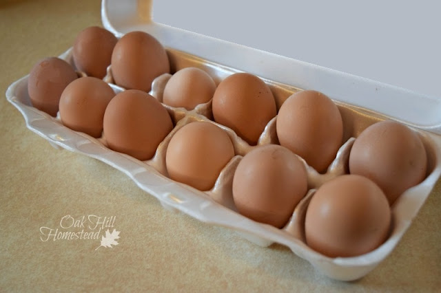 Are you overrun with eggs? Here are 13 delicious ways to use extra eggs.