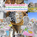 รีวิวลุยเดี่ยวเที่ยวฝรั่งเศสตอนที่ 2 ตามรอยขุนหมื่นศรีวิสารวาจา เดินลั๊ลลาชมพระราชวังแวร์ซาย งามพร่างพรายสวนลุกซ็องบูร์ ดูดอกไม้สวยหรู บานจุ๊กกรูจับใจ