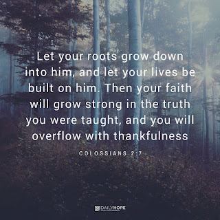Grow, Sow, and Go in Faith by Rick Warren