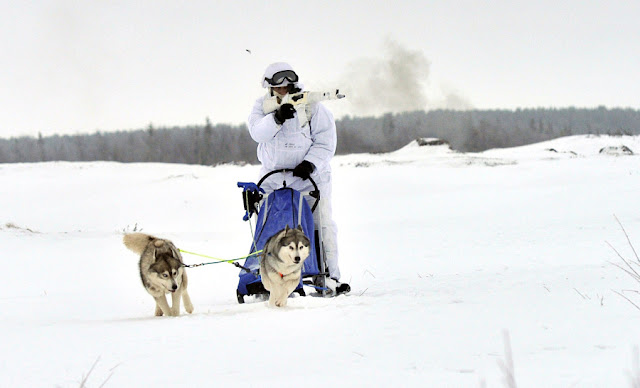 Image Attribute: A Russian serviceman of the Northern Fleet's Arctic mechanized infantry brigade participates in a military drill on riding reindeer and dog sleds near the settlement of Lovozero outside Murmansk, Russia January 23, 2017. Picture was taken January 23, 2017. Lev Fedoseyev/Ministry of Defence of the Russian Federation/Handout via REUTERS
