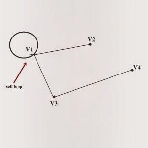 self loop msc computer science