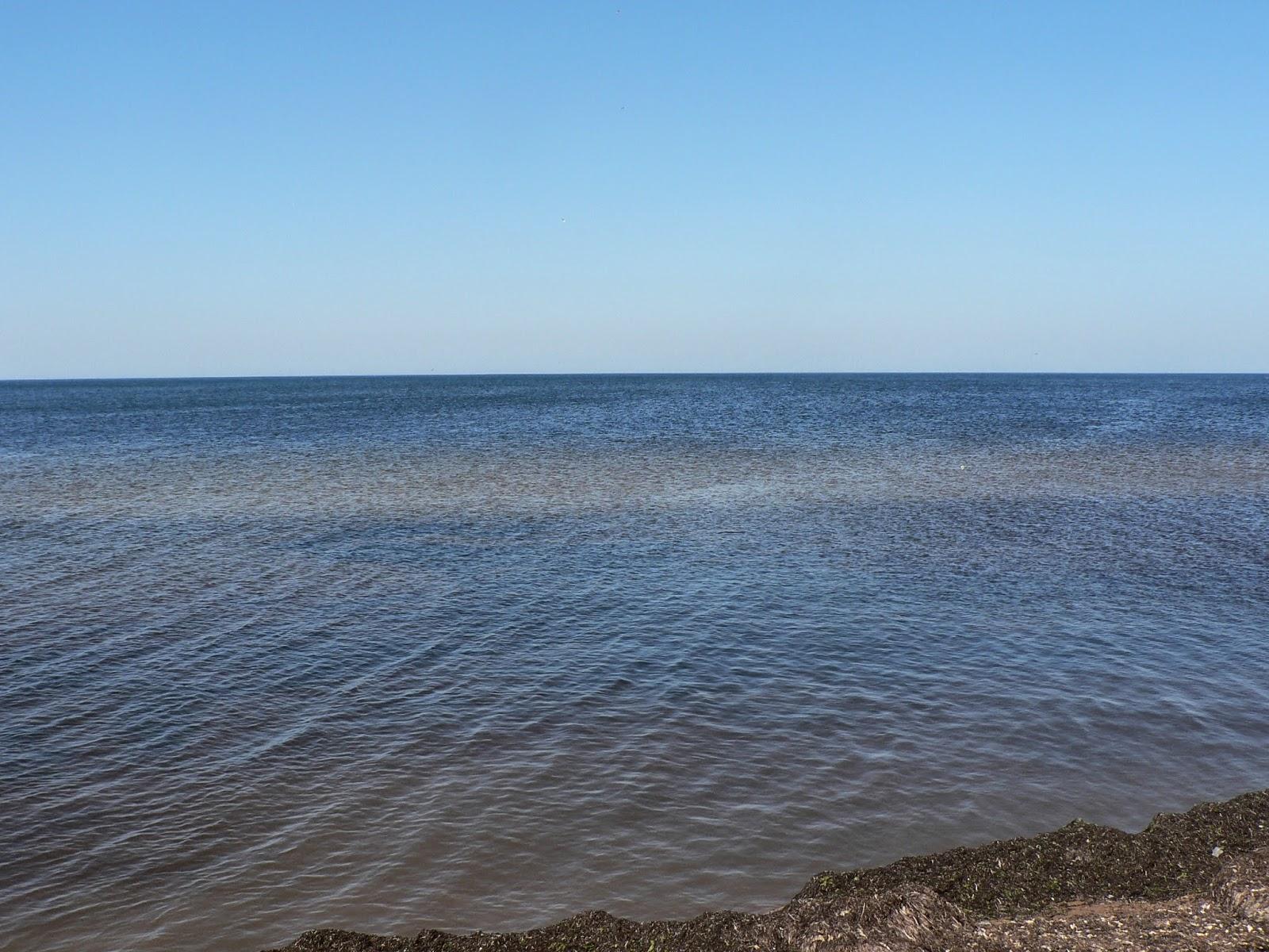 Море-в-Евпатории