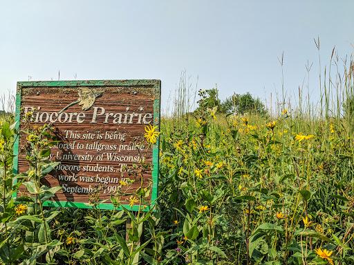 Biocore Tallgrass Prairie at UW Lakeshore Preserve