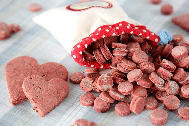 Homemade pink salmon dog treats in a dog treat bag