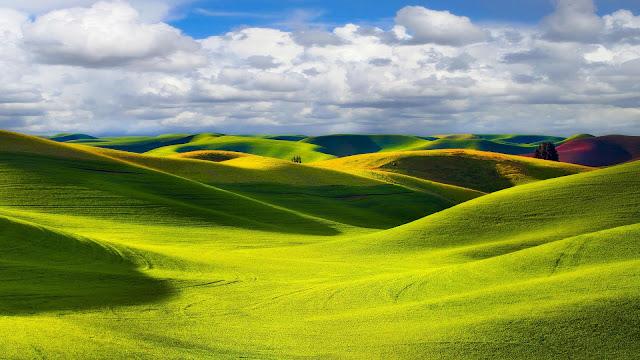 Foto gras landschap met heuvels
