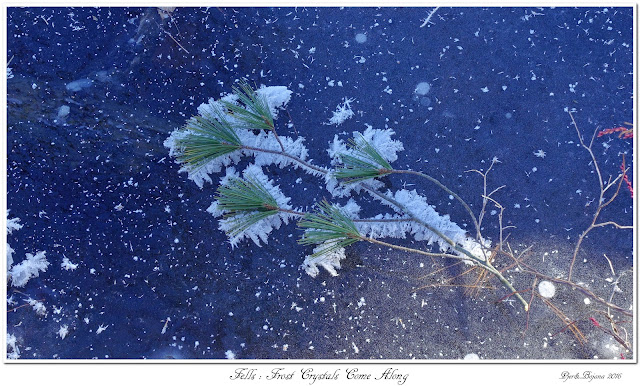 Fells: Frost Crystals Come Along