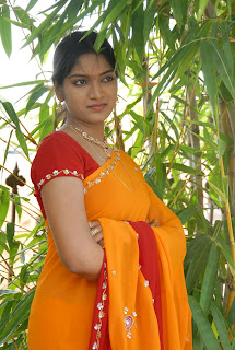 Keerthi Saree Pictures (2)