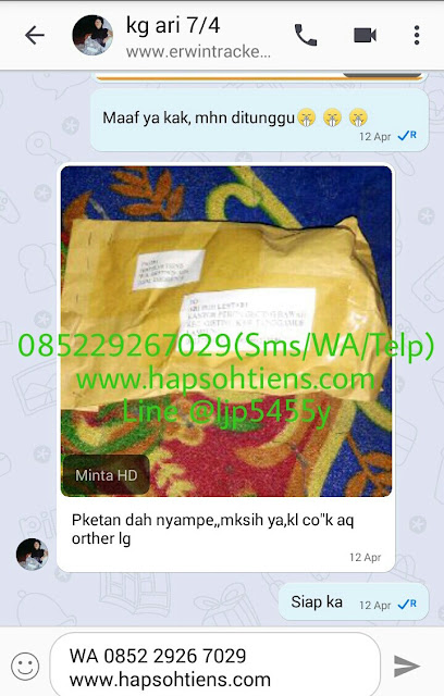 Hub. 085229267029 Hapsohtiens Distributor MHCA Tiens Klungkung Agen Stokis Toko Cabang Tiens Internasional