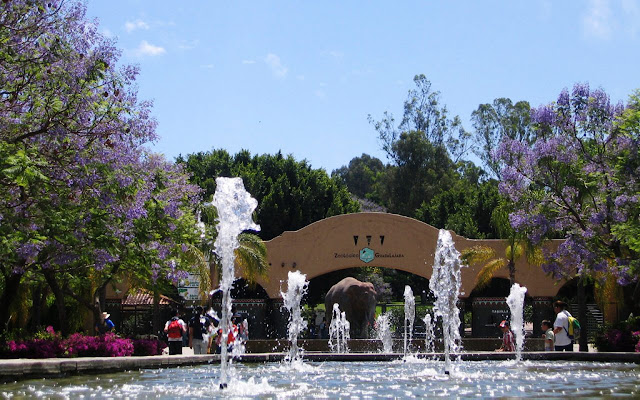 Visita el Zoológico de Guadalajara
