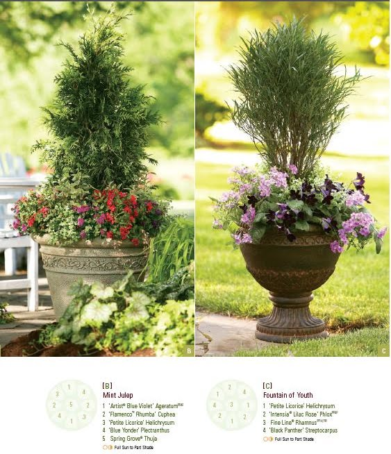 Proven Winners Container Design Book For Gardeners