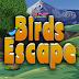 Knf Birds Escape