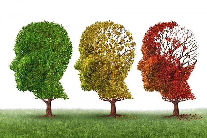 150.000 Marocains atteints de la maladie d'Alzheimer.