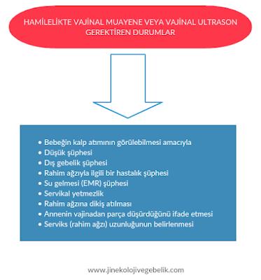 hamilelikte jinekolojik muayene