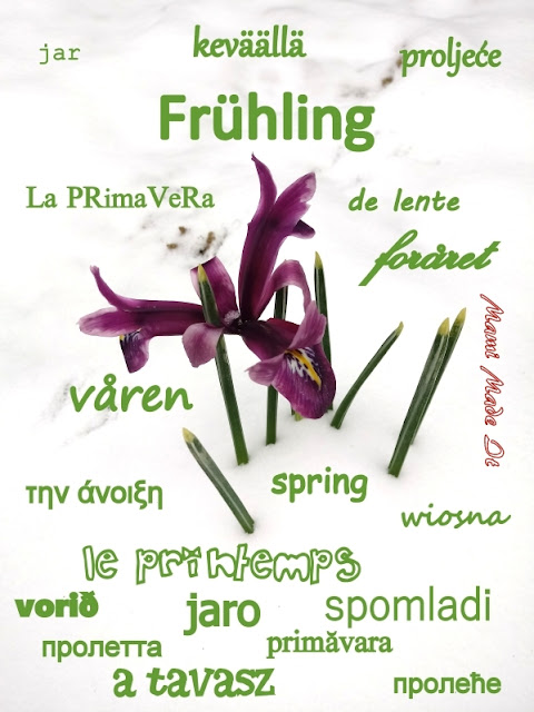 Frühling - Spring Foto: Mami Made It