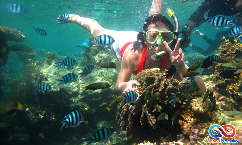 wisata pulau pramuka seribu
