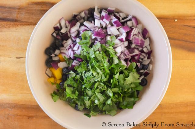 Blueberry-Mango-Salsa-Cilantro.jpg