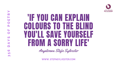 'If you can explain colours to the blind...' | Stefn Sylvester Anyatonwu