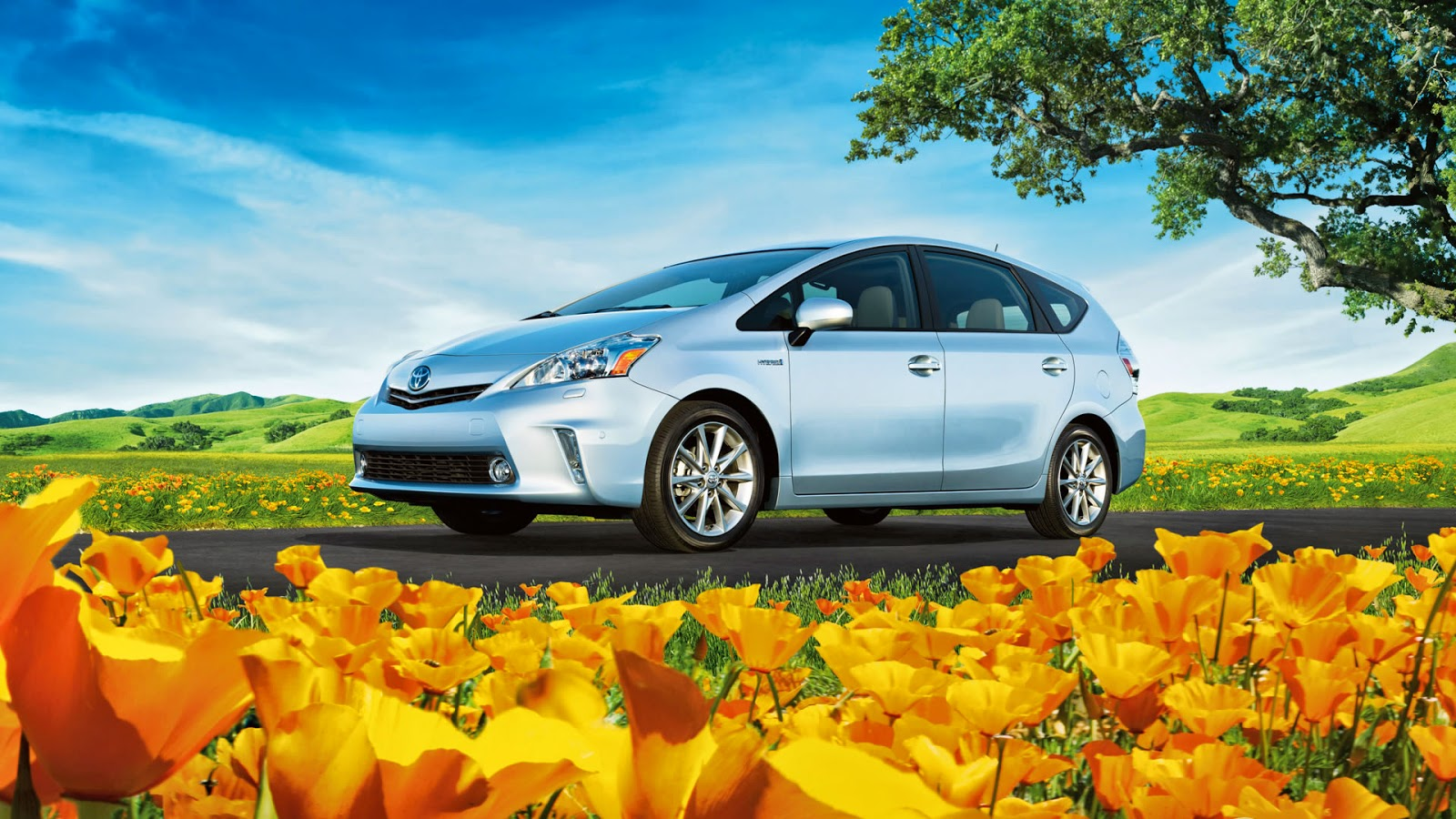 Stokes Brown Toyota >> Stokes Brown Toyota of Hilton Head: Driving With A Green Thumb: the 2015 Toyota Prius