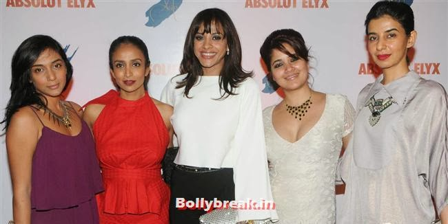 Shweta Salve,Suchitra Pillai, Manasi Scott, Narayani Shastri and Ekta Rajani, Narayani Shastri, Pria Kataria Puri, others at Absolut Elyx Party